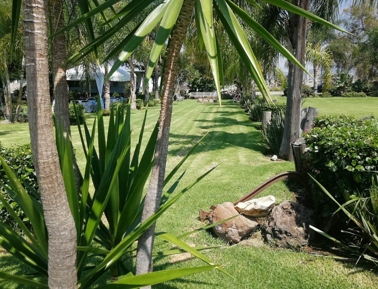 Imagen 7 del espacio Jardín rancho santa anita en Tlaquepaque, México